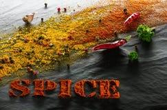 spice cúrcuma, paprika, pimentas pretas, brancas e vermelhas, pimentas de pimentão, salsa e alho em um fundo estrutural preto fotografia de stock