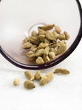 Spice, Cardamom Royalty Free Stock Image