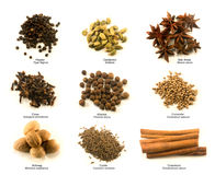 Spice chart Royalty Free Stock Photo