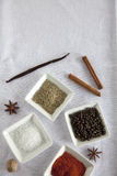 Spice Cinnamon Star Anise Stock Image