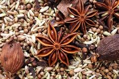 Spice Cinnamon And Star Anise Stock Photos