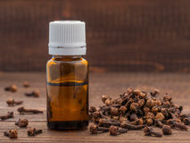 Spice clove essential oil. In dark glass bottle anddry cloves on dark wooden background with copy space Royalty Free Stock Photos