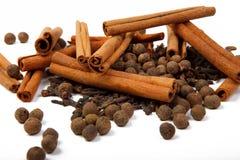 Spice clove with seasonings Stock Image