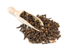 Spice clove spice in spoon Royalty Free Stock Photos