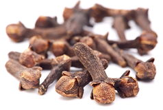Spice cloves. Stock Image
