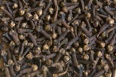 Spice cloves Royalty Free Stock Photo