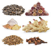 Spice cloves , sunflower seeds, ginger, garlic, lotus stem, Cori Stock Photography
