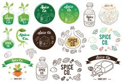 Spice Co Badge and Logo Element Vector Illustration. For many food industry purpose their logo, social media profile picture, website or blog banner, etc. EPS Royalty Free Illustration