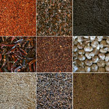 Spice.Collage Royalty Free Stock Photography