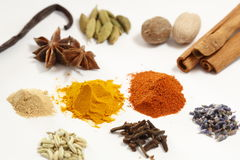 Spice collection Royalty Free Stock Image