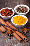 Spice collection Royalty Free Stock Photography