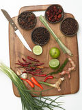 Spice collection on black background Royalty Free Stock Images