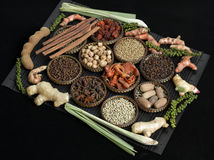 Spice collection on black background Royalty Free Stock Photos