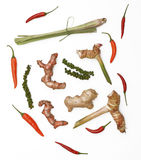 Spice collection on black background Stock Image