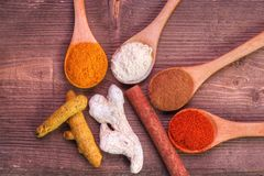 Spice collection. On brown wood royalty free stock photo