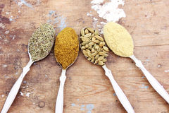 Spice. Collection of different spice like cardamom , coriander , rosemary on rustic wooden background royalty free stock photo