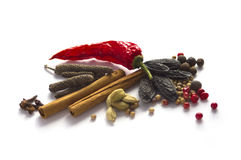 Spice collection isolated on white Stock Photography