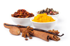 Spice collection. Isolated on white background Stock Photography