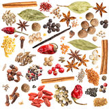 Spice collection Stock Photography