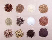 Spice collection Royalty Free Stock Photos