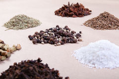 Spice collection Stock Image