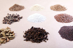 Spice collection Royalty Free Stock Photo