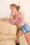 Spice country woman in a barn Stock Image