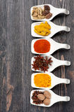 Spice curry, paprika, turmeric, anise, nutmeg, cardamom Stock Photos