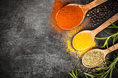 Spice on dark background Royalty Free Stock Photos