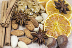 Spice and dried fruits Royalty Free Stock Images