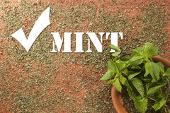 Spice - dry mint Stock Photography