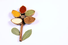 Spice flower. Flower created from colourful spices Royalty Free Stock Photography