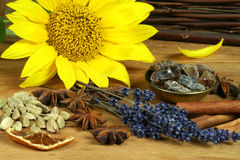 Spice and flower composition. Aromatic spices on the old wooden table. Ingrediences for fragrant potpourri Stock Images