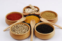Spice - grain - aroma. Different kinds of international spices on white Royalty Free Stock Photo