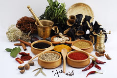 Spice - grain - aroma. Different kinds of spices and grinder on white stock photo