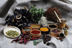 Spice - grain - aroma Stock Images