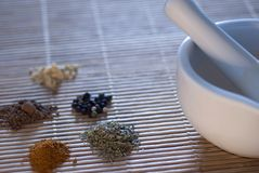 Spice Grinder. A pestle and mortar with a selection of ground spices, coriander, chilli, pepper, and cumin - narrow depth of field Stock Image