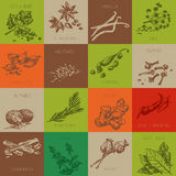 Spice hand drawn vector icon set