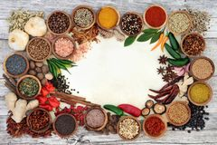 Spice and Herb Abstract Border Royalty Free Stock Images