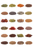 Spice and Herb Collection stock image