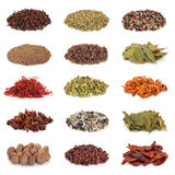 Spice and Herb Collection. Isolated over white background royalty free stock photography