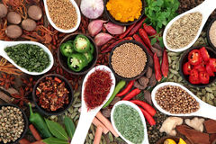 Spice and Herb Collection Royalty Free Stock Image