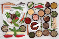 Spice and Herb Collection Stock Photography