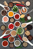 Spice and Herb Food Seasoning Stock Image