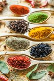 Spice. Herb indian culture seasoning wooden spoon variation curry powder Royalty Free Stock Images