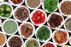 Spice and Herb Ingredients Royalty Free Stock Photography