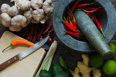 Spice,Herb. Royalty Free Stock Photos
