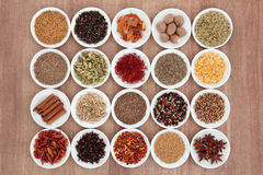 Spice and Herb Sampler. Large spice and herb selection in white porcelain bowls over papyrus background Royalty Free Stock Photos