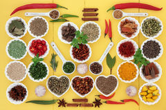 Spice and Herb Sampler Royalty Free Stock Image