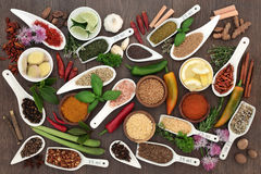 Spice and Herb Sampler Stock Photos